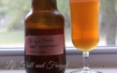 Kombucha Brewing Class - Life Full and Frugal