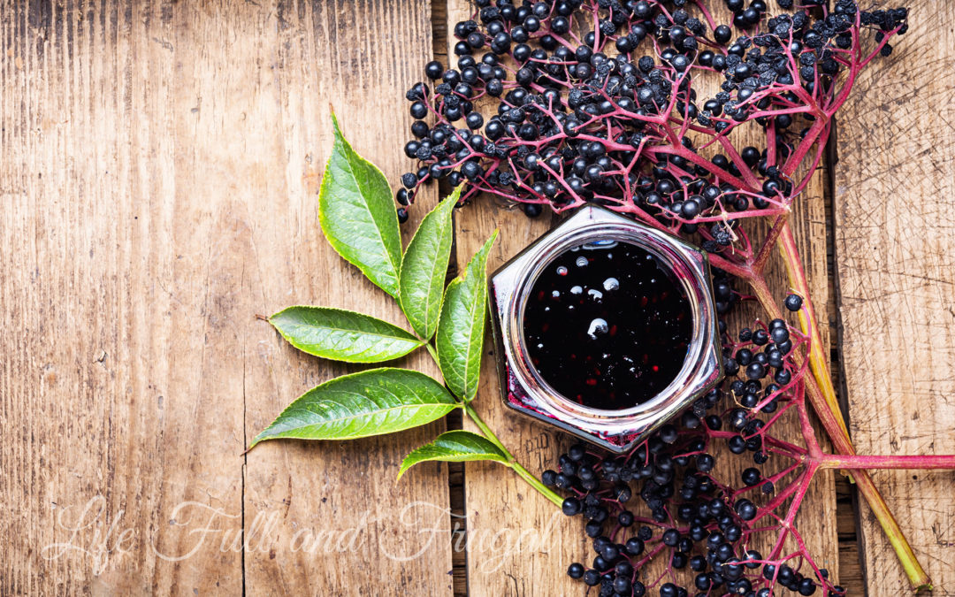Elderberry Cough Syrup and Immune Booster Recipe