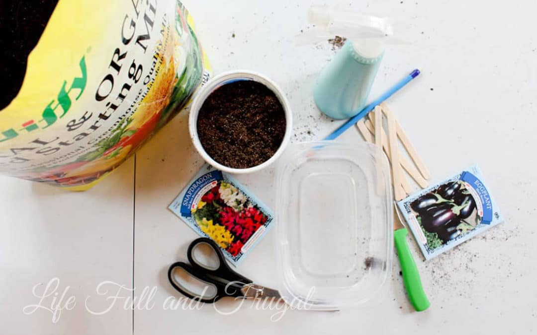 Simple Steps to Starting Seeds Indoors