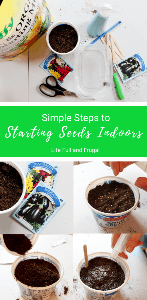 Simple Steps to Starting Seeds Indoors Life Full and Frugal Pinterest