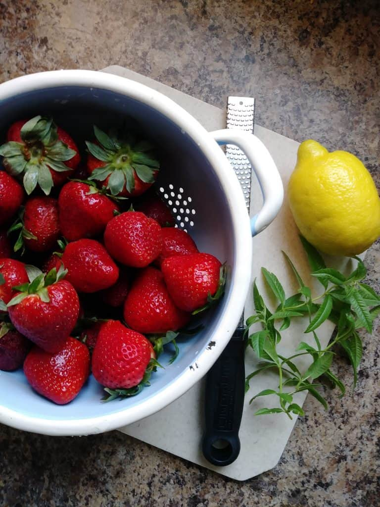 strawberries and lemons life full and frugal