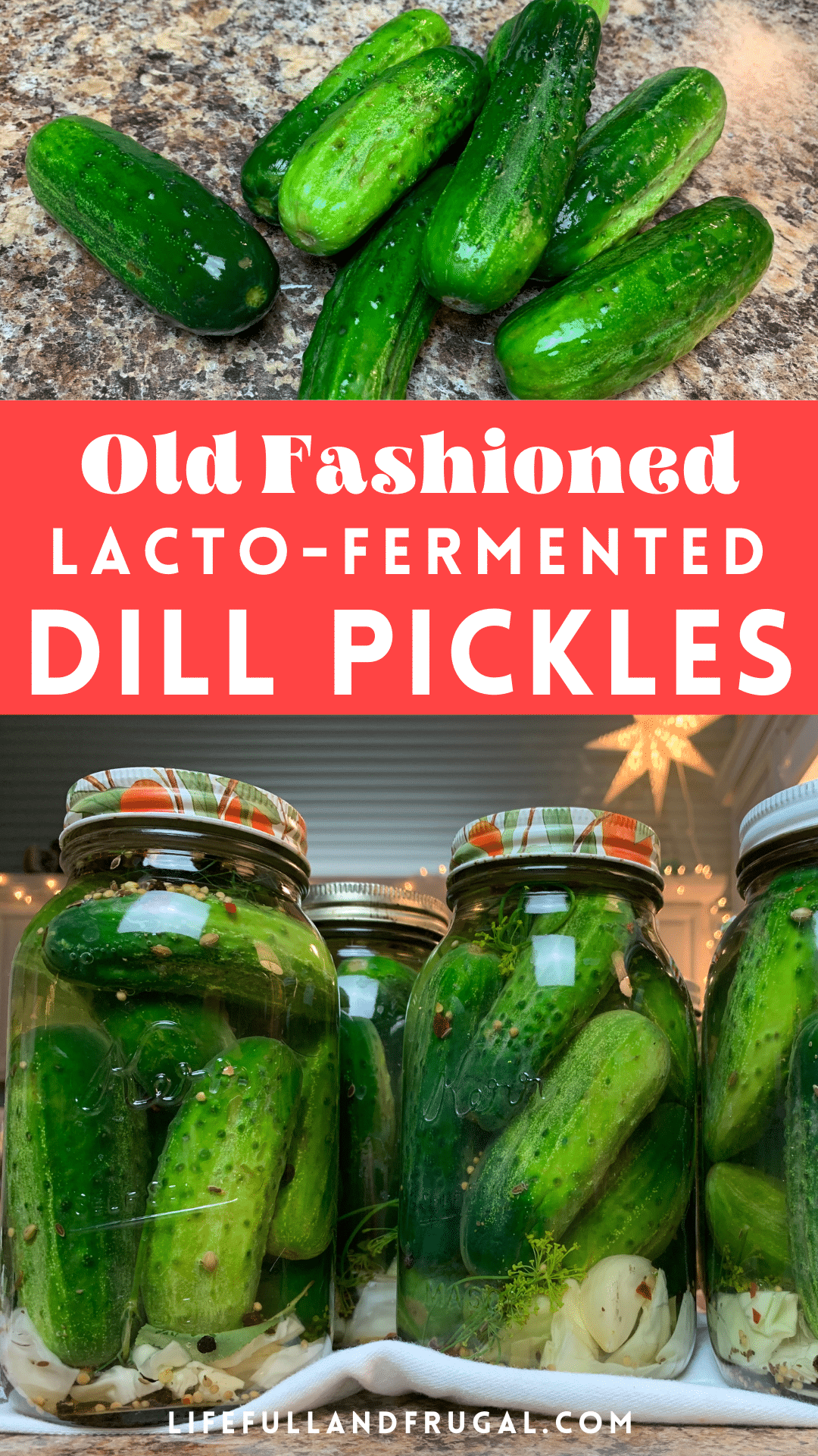 lacto fermented dill pickle recipe life full and frugal pin