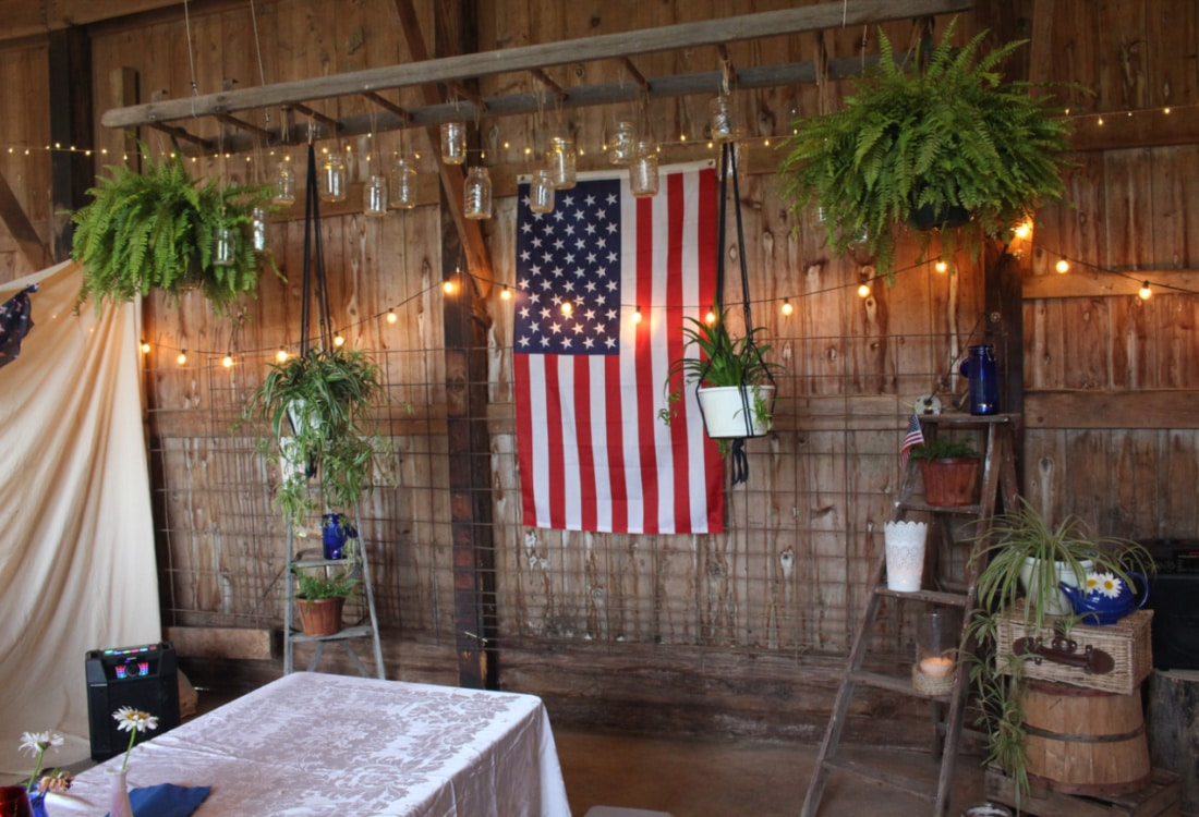 an American flag surrounded by lights and plants life full and frugal