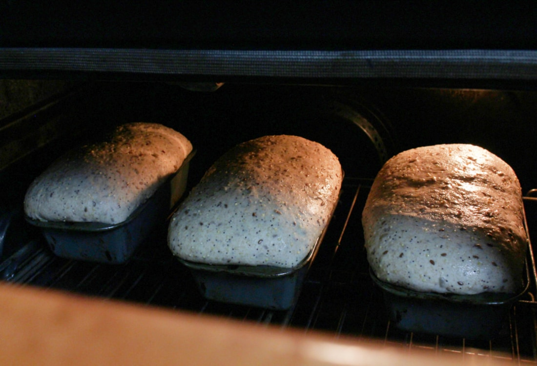 sourdough bread loaves in the oven life full and frugal