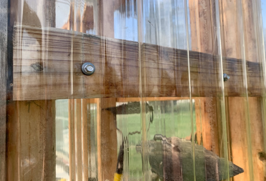 corrugated plastic siding for our greenhouse made from recycled materials life full and frugal