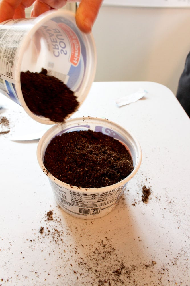 starting seeds at home life full and frugal